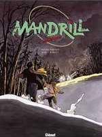 mandril7.jpg